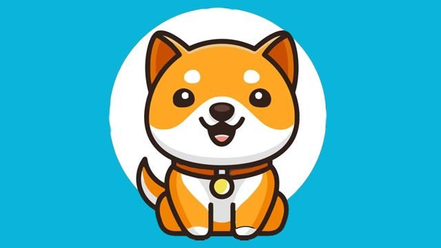 Baby Doge falls by 40%